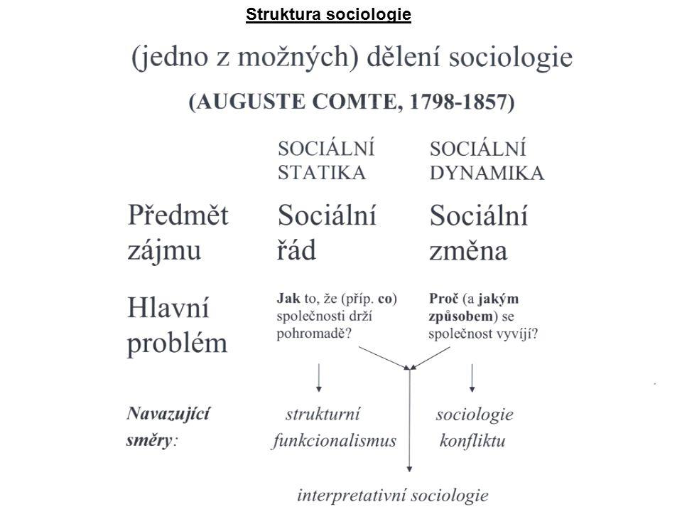 Struktura sociologie