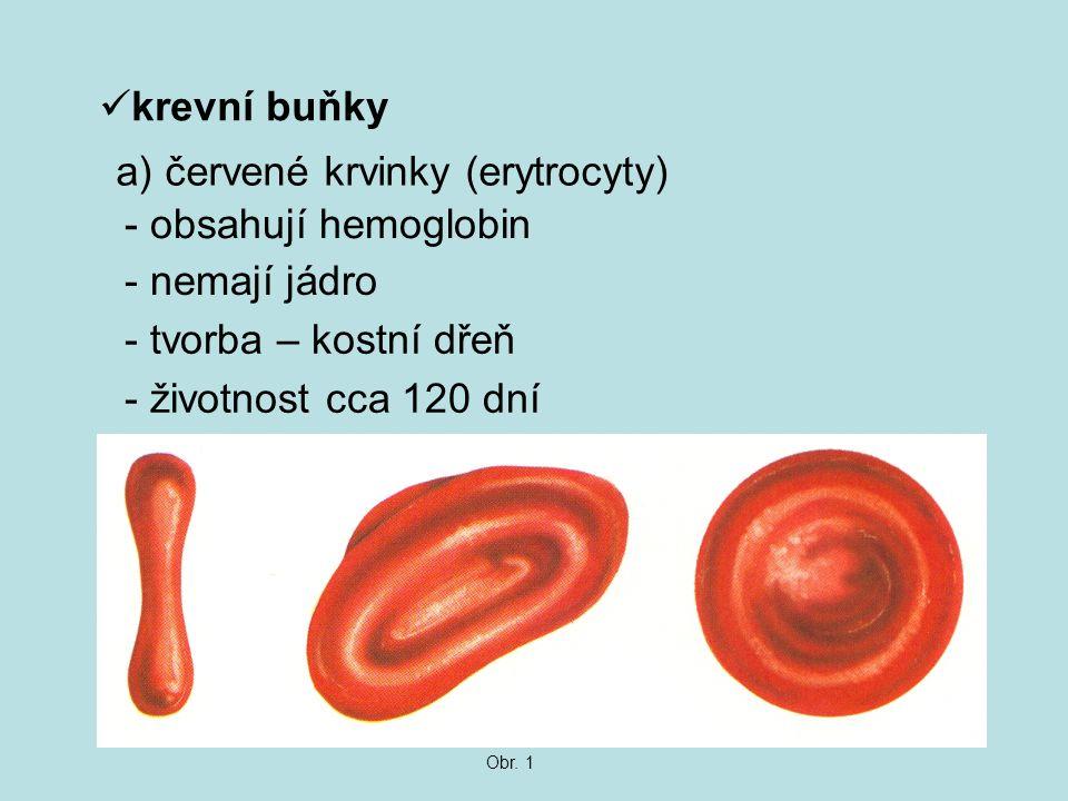 krevní buňky a) červené krvinky (erytrocyty) - obsahují hemoglobin - nemají jádro - tvorba – kostní dřeň - životnost cca 120 dní Obr. 1