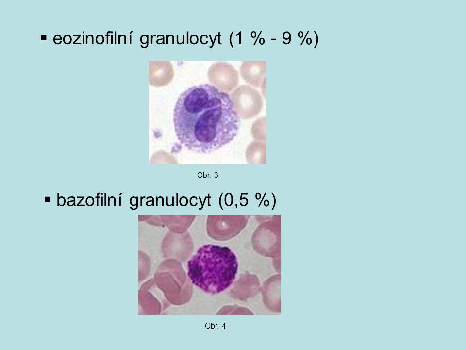  eozinofilní granulocyt (1 % - 9 %) Obr. 3  bazofilní granulocyt (0,5 %) Obr. 4