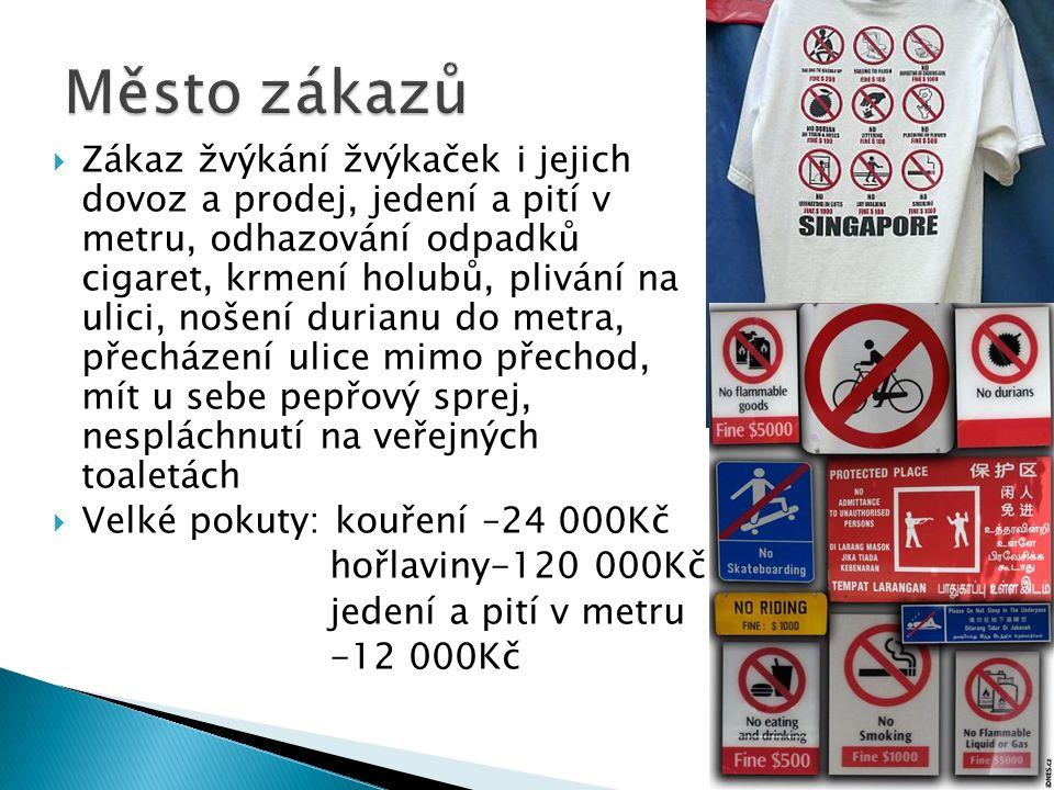  Zákaz žvýkání žvýkaček i jejich dovoz a prodej, jedení a pití v metru, odhazování odpadků cigaret, krmení holubů, plivání na ulici, nošení durianu do metra, přecházení ulice mimo přechod, mít u sebe pepřový sprej, nespláchnutí na veřejných toaletách  Velké pokuty: kouření –24 000Kč hořlaviny-120 000Kč jedení a pití v metru -12 000Kč
