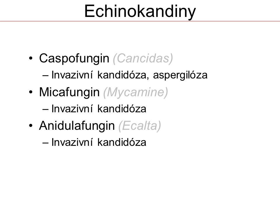 Echinokandiny Caspofungin (Cancidas) –Invazivní kandidóza, aspergilóza Micafungin (Mycamine) –Invazivní kandidóza Anidulafungin (Ecalta) –Invazivní kandidóza