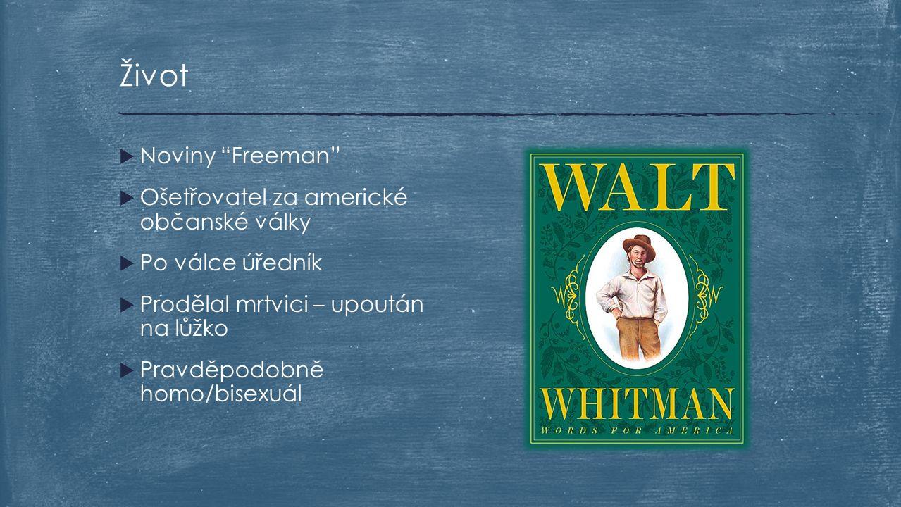 """ Noviny """"Freeman""""  Ošetřovatel za americké občanské války  Po válce úředník  Prodělal mrtvici – upoután na lůžko  Pravděpodobně homo/bisexuál Živ"""