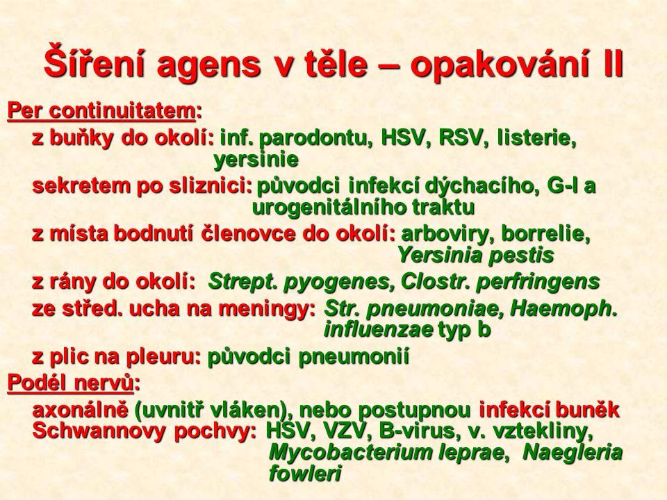 Šíření agens v těle – opakování II Per continuitatem: z buňky do okolí: inf. parodontu, HSV, RSV, listerie, yersinie sekretem po sliznici: původci inf