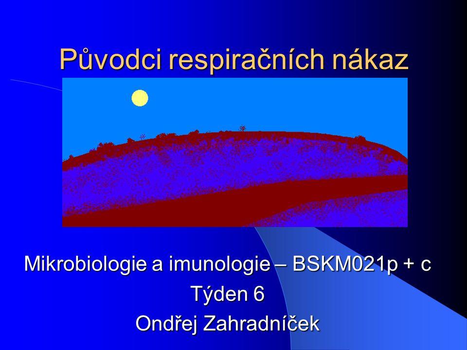 Původci respiračních nákaz Mikrobiologie a imunologie – BSKM021p + c Týden 6 Ondřej Zahradníček