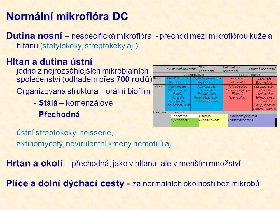 Normální mikroflóra DC Dutina nosní – nespecifická mikroflóra - přechod mezi mikroflórou kůže a hltanu (stafylokoky, streptokoky aj.) Hltan a dutina ú
