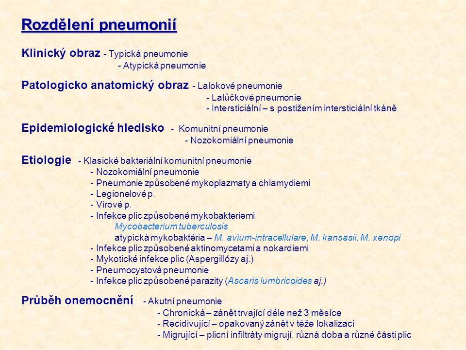 Rozdělení pneumonií Klinický obraz - Typická pneumonie - Atypická pneumonie Patologicko anatomický obraz - Lalokové pneumonie - Lalůčkové pneumonie -