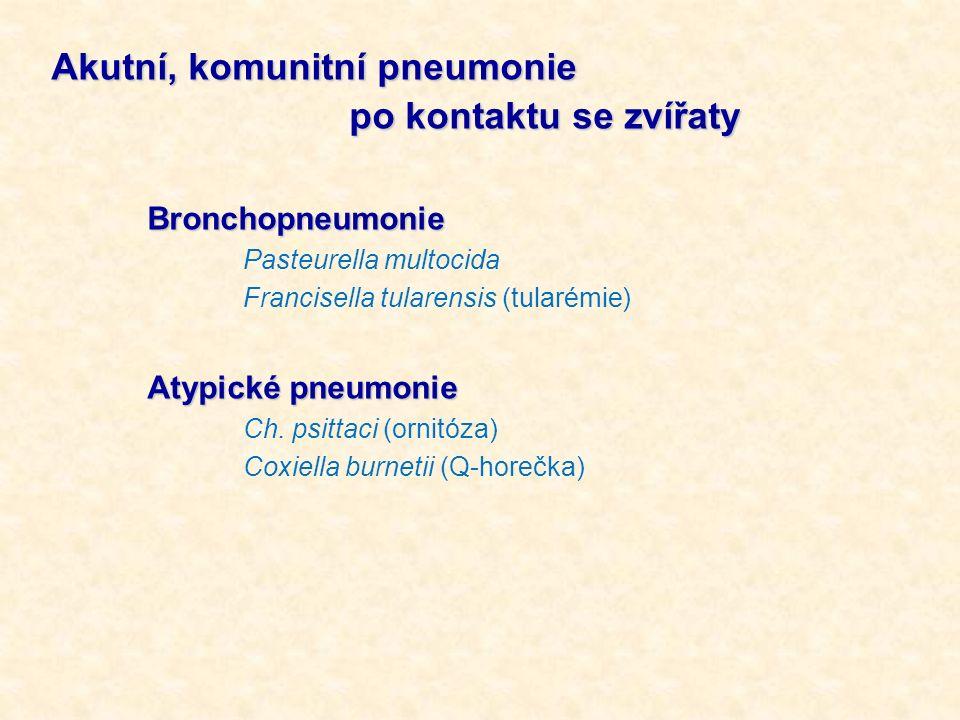 Akutní, komunitní pneumonie po kontaktu se zvířaty po kontaktu se zvířatyBronchopneumonie Pasteurella multocida Francisella tularensis (tularémie) Aty