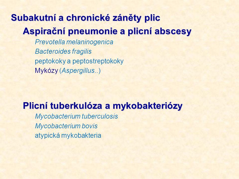 Subakutní a chronické záněty plic Aspirační pneumonie a plicní abscesy Prevotella melaninogenica Bacteroides fragilis peptokoky a peptostreptokoky Myk