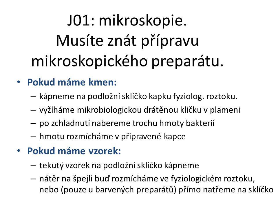 J01: mikroskopie. Musíte znát přípravu mikroskopického preparátu. Pokud máme kmen: – kápneme na podložní sklíčko kapku fyziolog. roztoku. – vyžíháme m