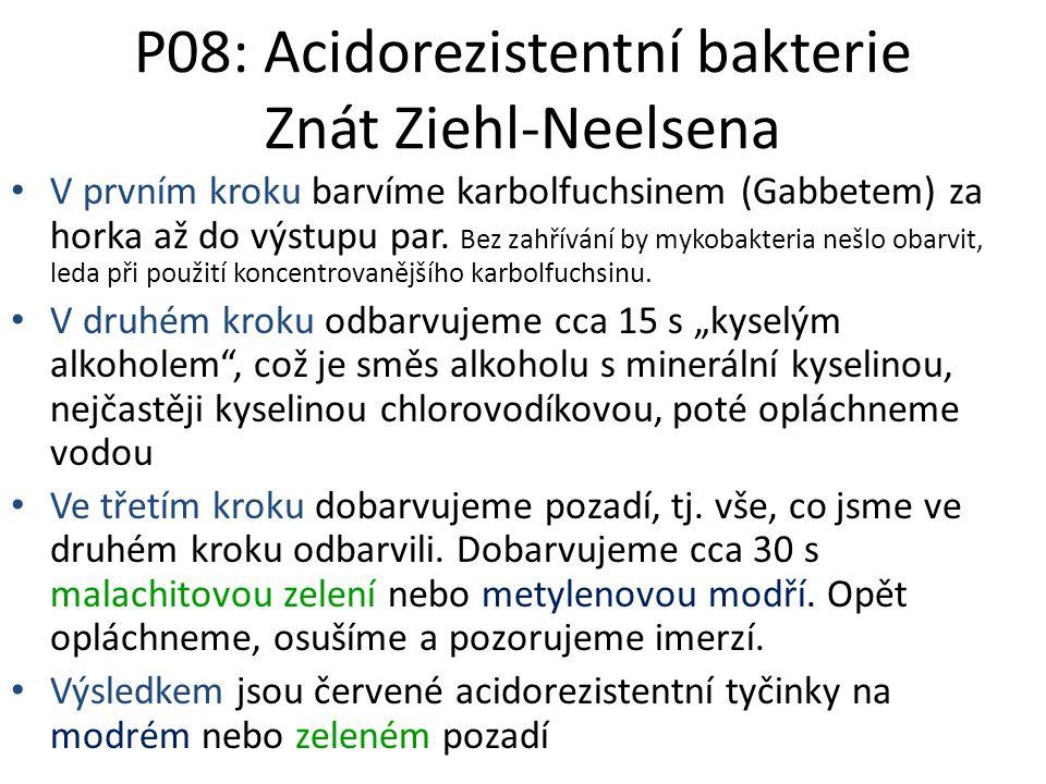P08: Acidorezistentní bakterie Znát Ziehl-Neelsena V prvním kroku barvíme karbolfuchsinem (Gabbetem) za horka až do výstupu par. Bez zahřívání by myko