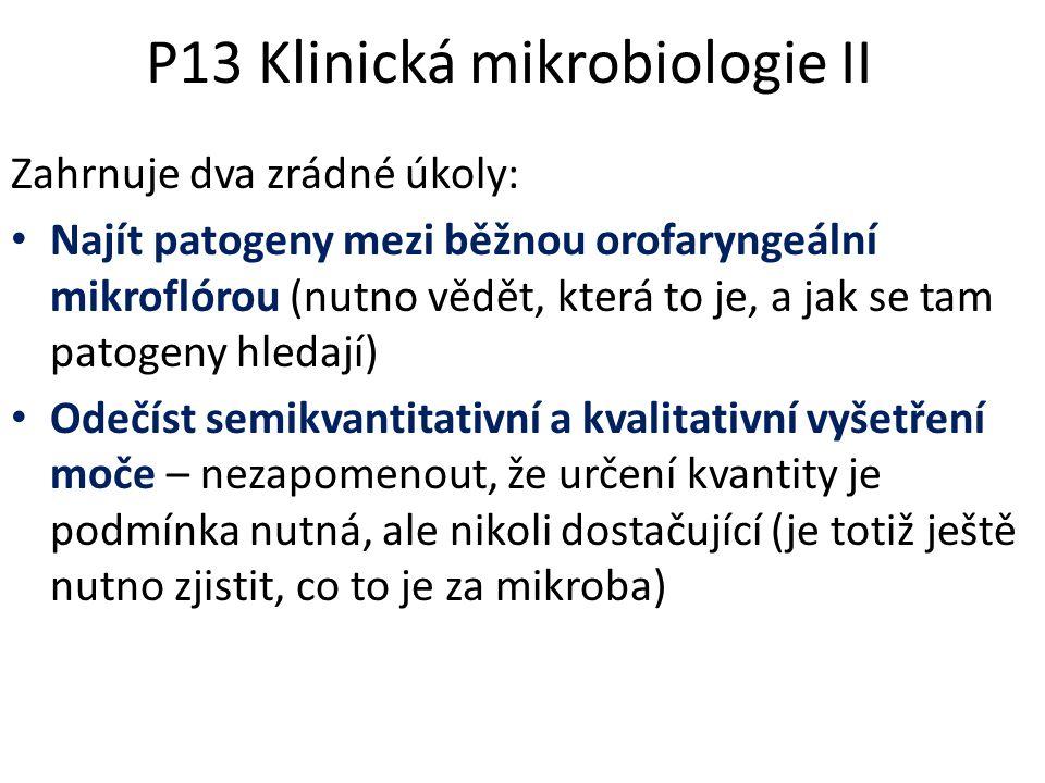 P13 Klinická mikrobiologie II Zahrnuje dva zrádné úkoly: Najít patogeny mezi běžnou orofaryngeální mikroflórou (nutno vědět, která to je, a jak se tam
