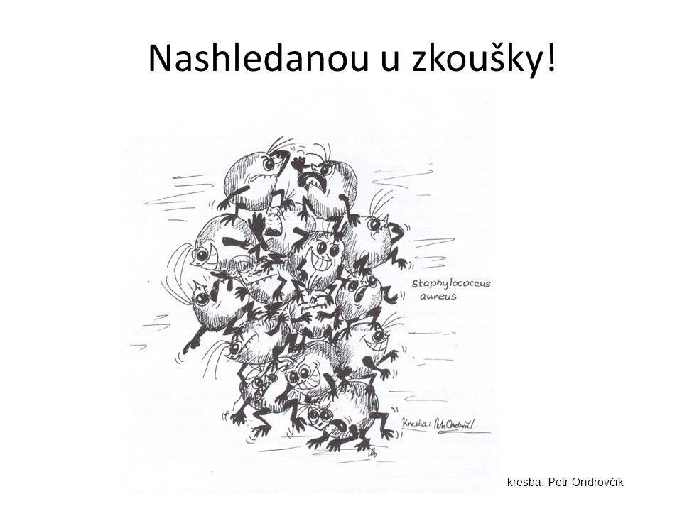 Nashledanou u zkoušky! kresba: Petr Ondrovčík
