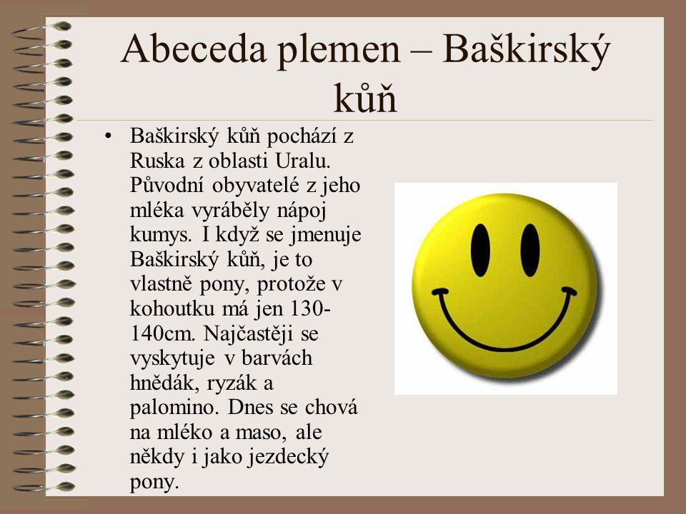 Abeceda plemen – Baškirský kůň Baškirský kůň pochází z Ruska z oblasti Uralu.