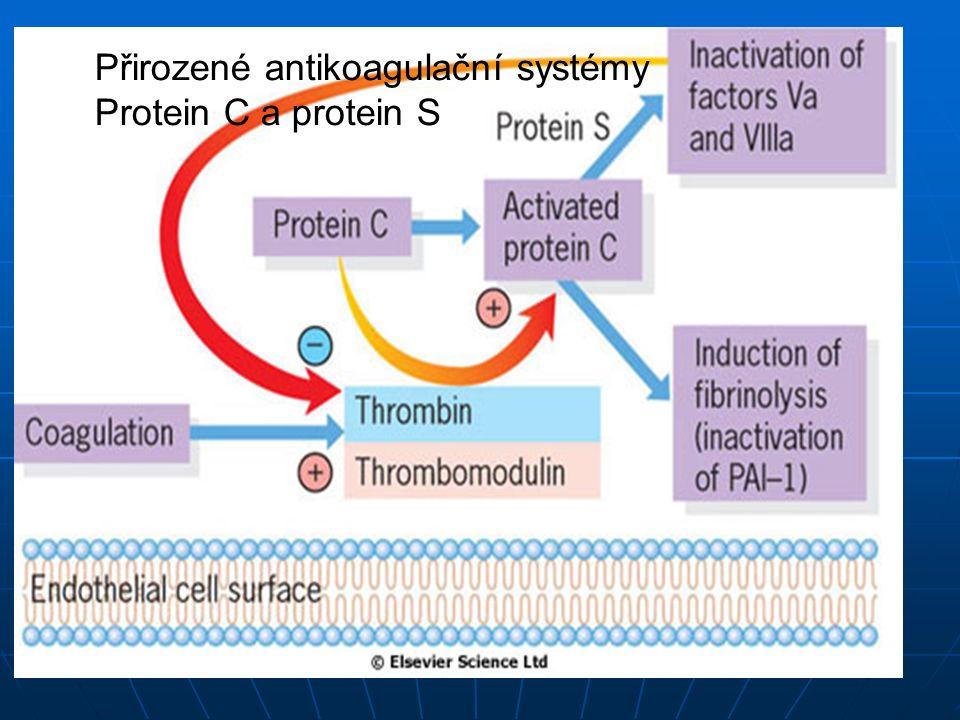Přirozené antikoagulační systémy Protein C a protein S