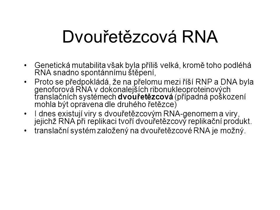 Dvouřetězcová RNA Genetická mutabilita však byla příliš velká, kromě toho podléhá RNA snadno spontánnímu štěpení, Proto se předpokládá, že na přelomu