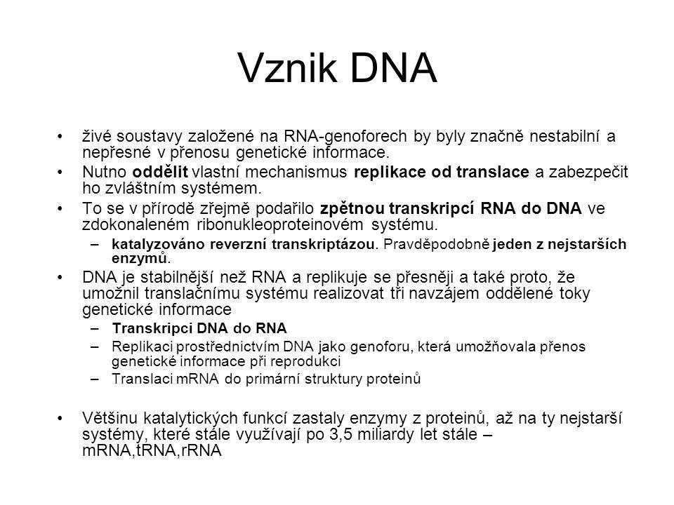 Vznik DNA živé soustavy založené na RNA-genoforech by byly značně nestabilní a nepřesné v přenosu genetické informace. Nutno oddělit vlastní mechanism