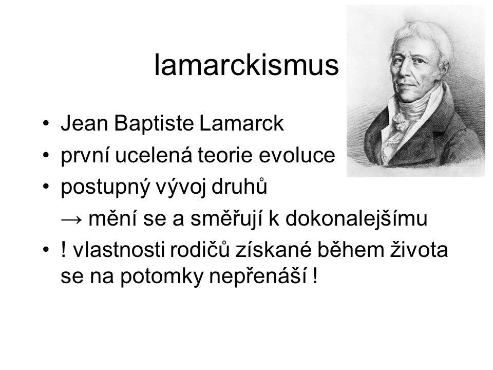 lamarckismus Jean Baptiste Lamarck první ucelená teorie evoluce postupný vývoj druhů → mění se a směřují k dokonalejšímu ! vlastnosti rodičů získané b
