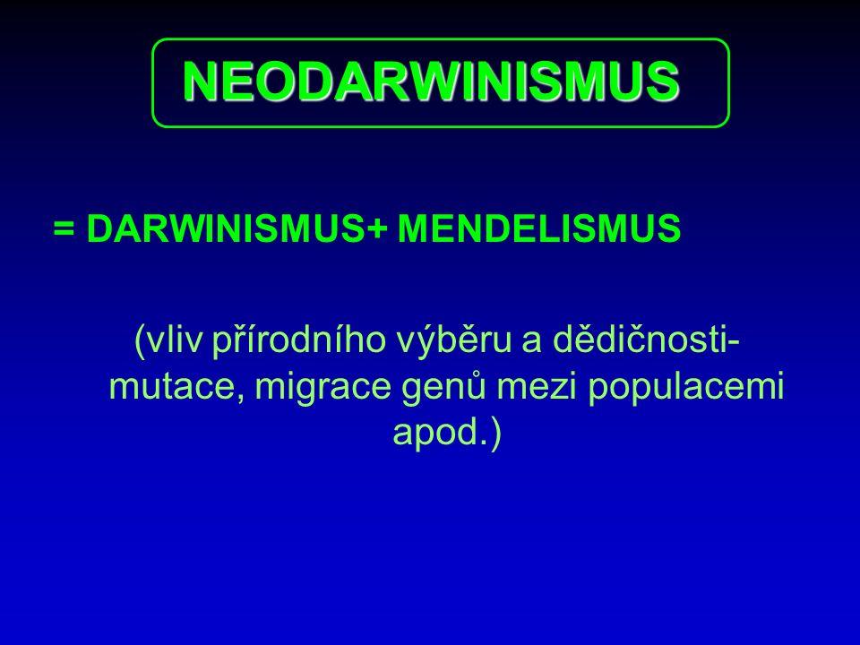 NEODARWINISMUS = DARWINISMUS+ MENDELISMUS (vliv přírodního výběru a dědičnosti- mutace, migrace genů mezi populacemi apod.)