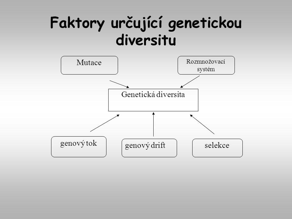Genetická diversita Faktory určující genetickou diversitu genový tok selekce Mutace genový drift Rozmnožovací systém
