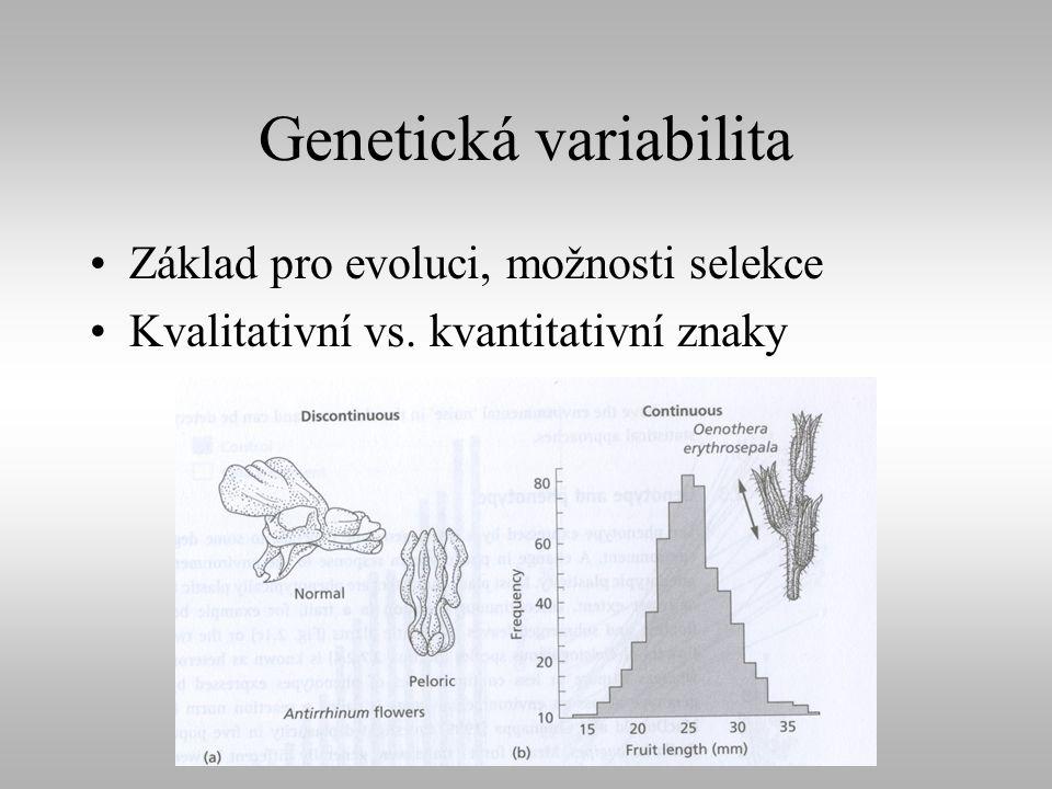 Genetická variabilita Základ pro evoluci, možnosti selekce Kvalitativní vs. kvantitativní znaky