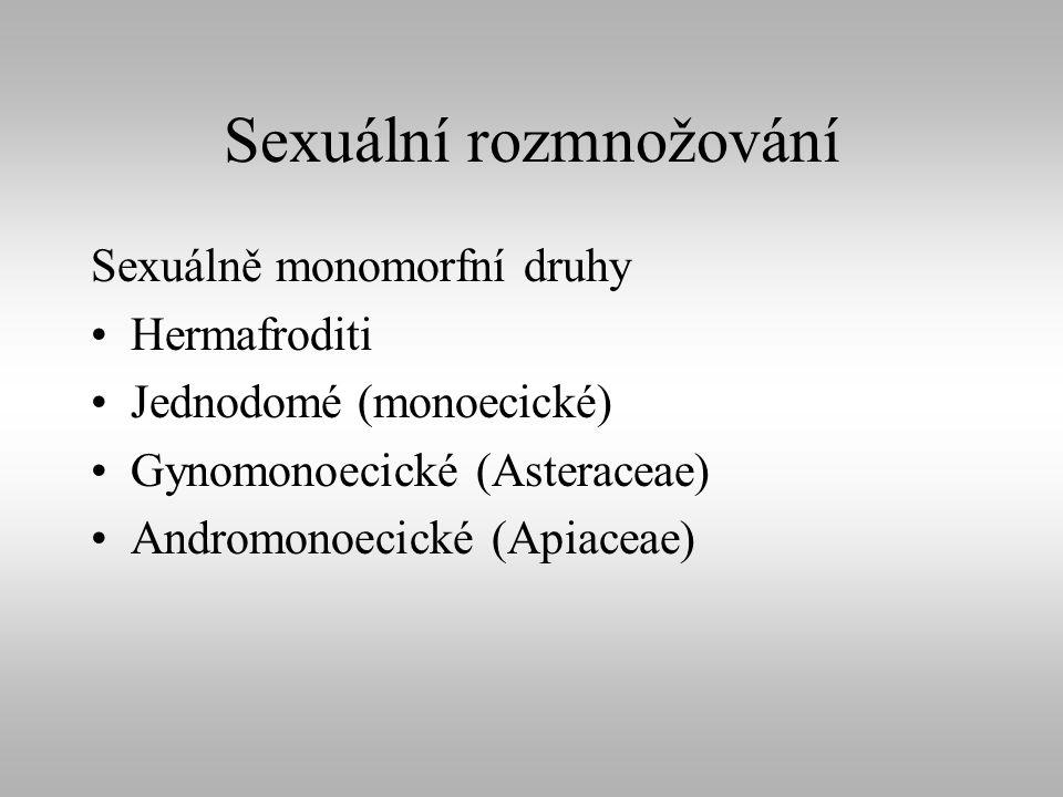 Sexuální rozmnožování Sexuálně monomorfní druhy Hermafroditi Jednodomé (monoecické) Gynomonoecické (Asteraceae) Andromonoecické (Apiaceae)