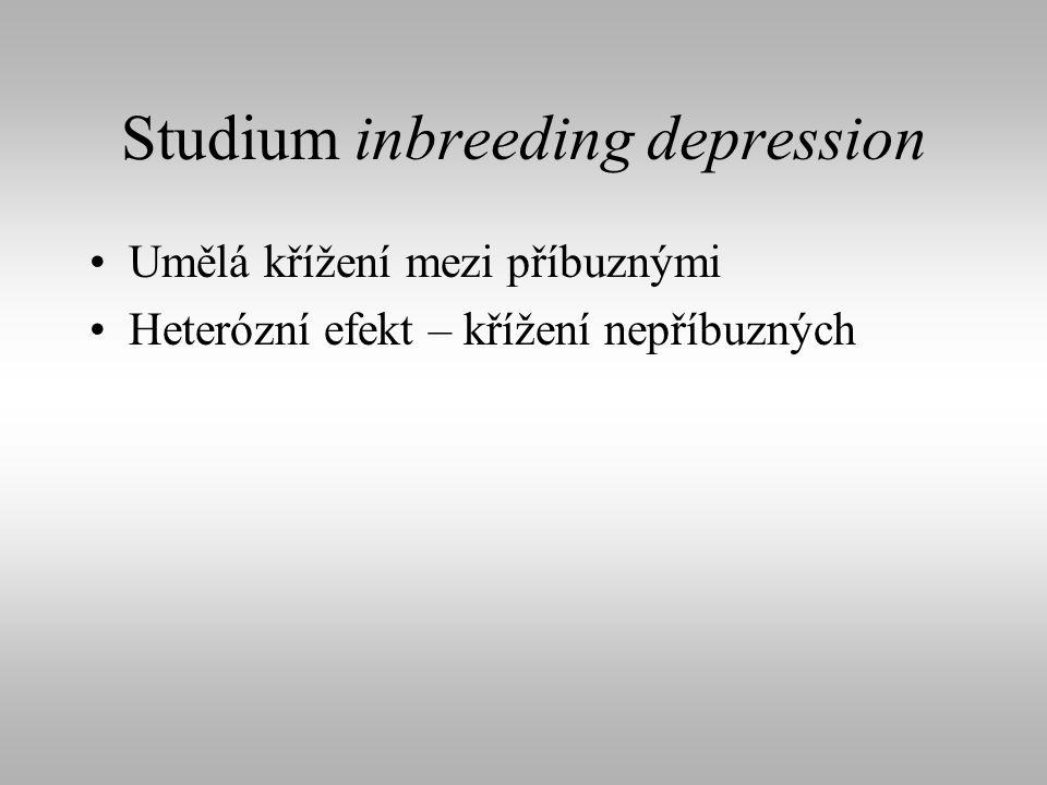Studium inbreeding depression Umělá křížení mezi příbuznými Heterózní efekt – křížení nepříbuzných
