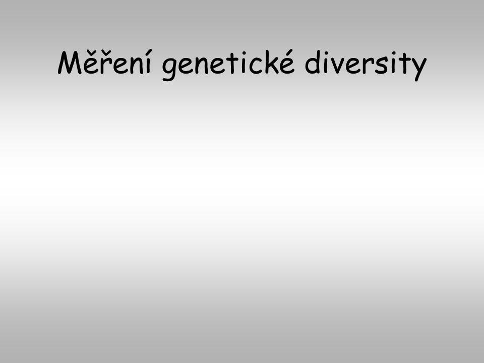 Měření genetické diversity