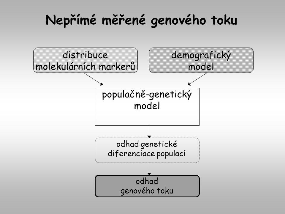 populačně-genetický model distribuce molekulárních markerů demografický model odhad genového toku odhad genetické diferenciace populací Nepřímé měřené genového toku