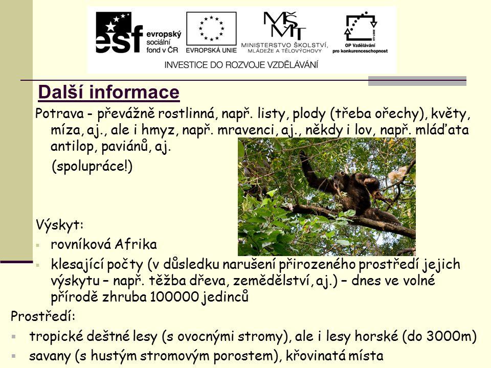 Další informace Potrava - převážně rostlinná, např. listy, plody (třeba ořechy), květy, míza, aj., ale i hmyz, např. mravenci, aj., někdy i lov, např.