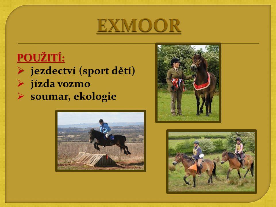 VZNIK: Anglie HISTORIE CHOVU:   Původně polodivoce chovaní pony šlechtěni arabskými koňmi, welsh pony a hlavně A1/1, pak čistokrevně.