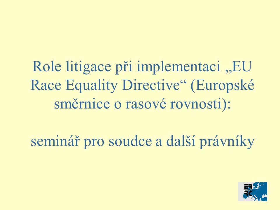 """Role litigace při implementaci """"EU Race Equality Directive (Europské směrnice o rasové rovnosti): seminář pro soudce a další právníky"""