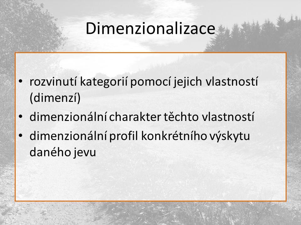 Dimenzionalizace rozvinutí kategorií pomocí jejich vlastností (dimenzí) dimenzionální charakter těchto vlastností dimenzionální profil konkrétního výskytu daného jevu