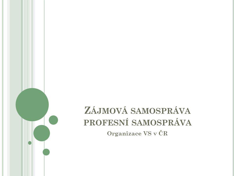 Z ÁJMOVÁ SAMOSPRÁVA PROFESNÍ SAMOSPRÁVA Organizace VS v ČR