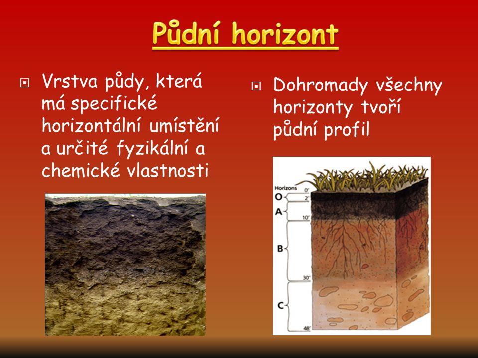  Vrstva půdy, která má specifické horizontální umístění a určité fyzikální a chemické vlastnosti  Dohromady všechny horizonty tvoří půdní profil