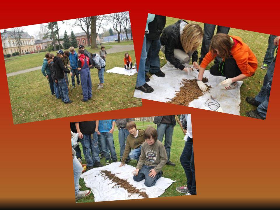  1. Půdní vzorek - v areálu naší školy  2. Půdní vzorek - v parku