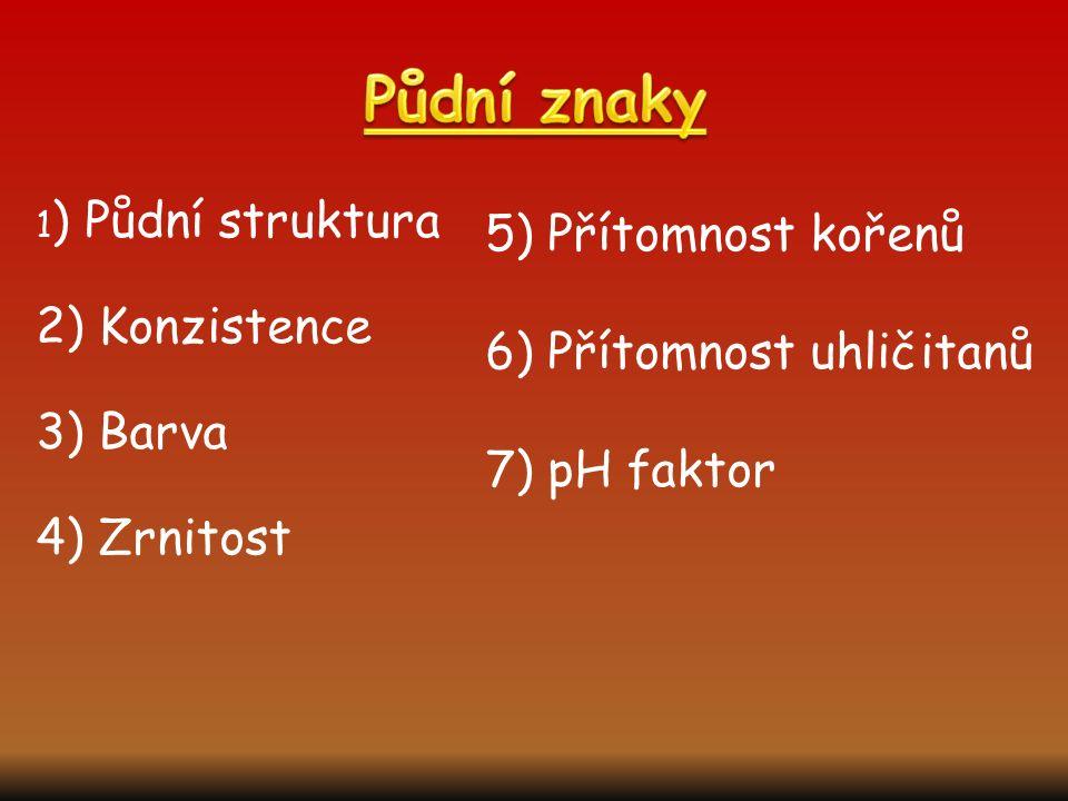 1 ) Půdní struktura 2) Konzistence 3) Barva 4) Zrnitost 5) Přítomnost kořenů 6) Přítomnost uhličitanů 7) pH faktor