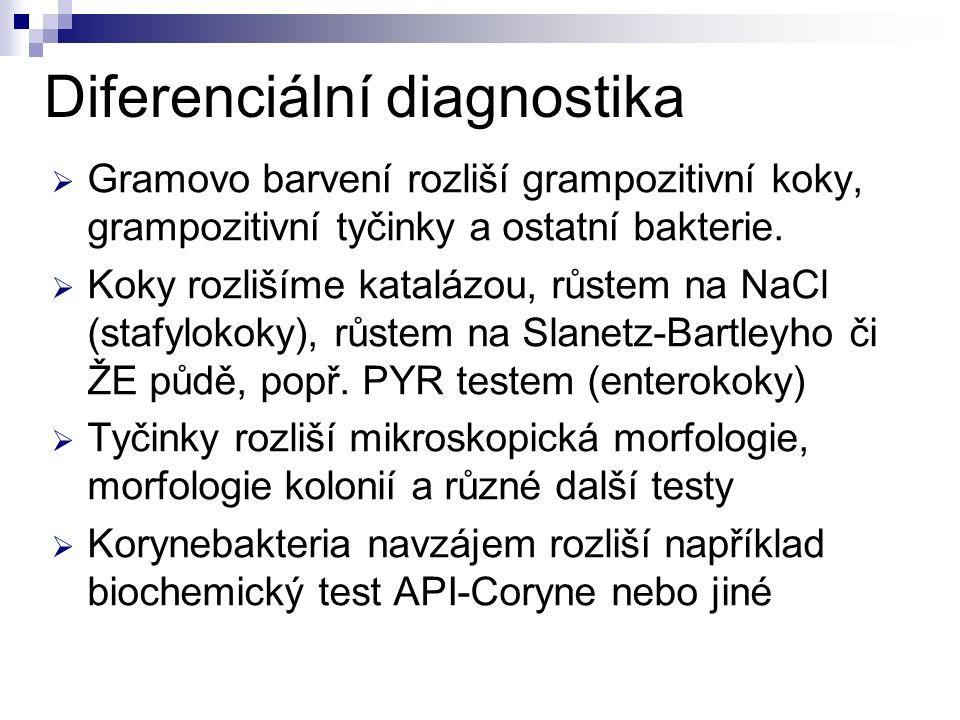 Diferenciální diagnostika  Gramovo barvení rozliší grampozitivní koky, grampozitivní tyčinky a ostatní bakterie.  Koky rozlišíme katalázou, růstem n