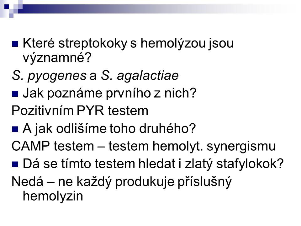 Které streptokoky s hemolýzou jsou významné? S. pyogenes a S. agalactiae Jak poznáme prvního z nich? Pozitivním PYR testem A jak odlišíme toho druhého