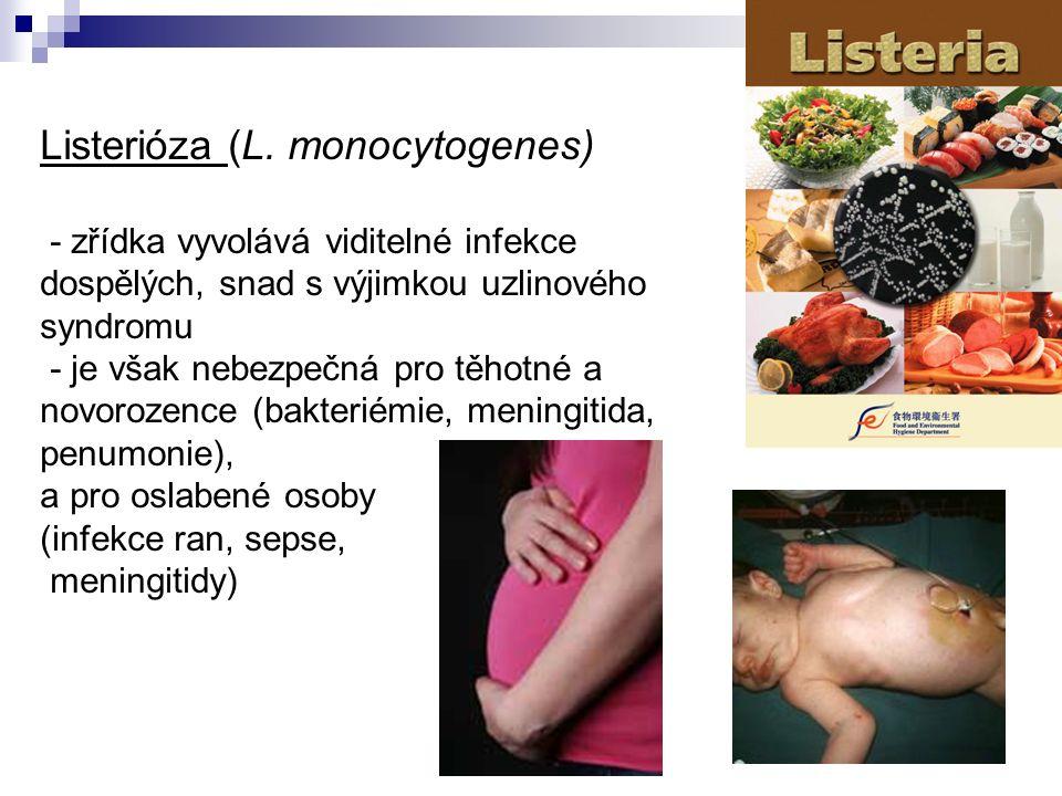 Listerióza (L. monocytogenes) - zřídka vyvolává viditelné infekce dospělých, snad s výjimkou uzlinového syndromu - je však nebezpečná pro těhotné a no