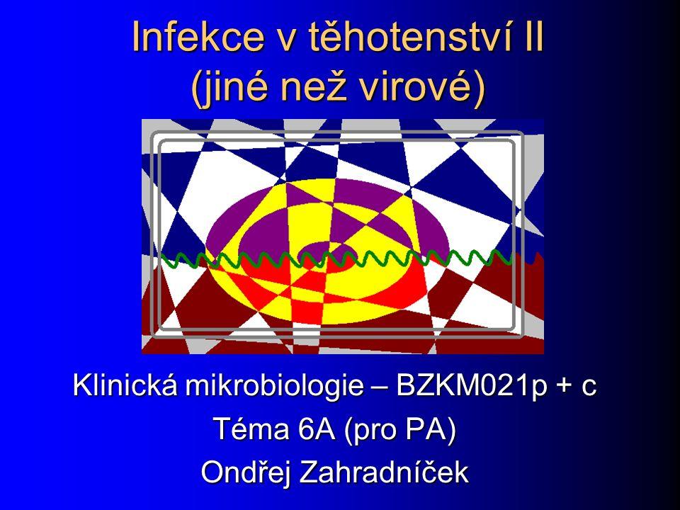Obsah této prezentace Úvod Toxoplasmóza Syfilis Listerióza Malárie Pozdní infekce