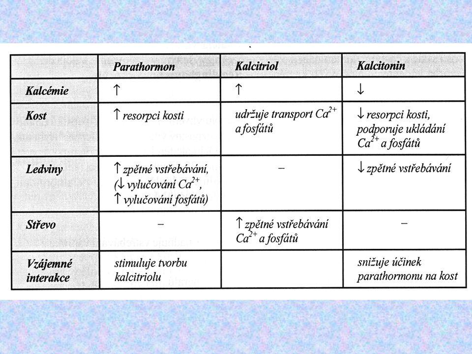 """VODNÍ hospodářství Antidiuretický hormonAntidiuretický hormon (ADH = vasopresin; nucleus supraopticus v hypotalamu-axonálním prouděním do neurohypofýzy) Signál pro sekreci: zvýšená osmolarita krevní plazmy nebo extracelulární tekutiny detekována osmoreceptory v hypotalamu Hlavní úkol: zadržet vodu v těle Hlavní místo působení: sběrací kanálek ledviny - vnese akvaporiny do membrány kanálků a tím umožní přenos vody přes tuto membránu, takže se jí více zadrží pro organismus (""""neuteče močí pryč )"""