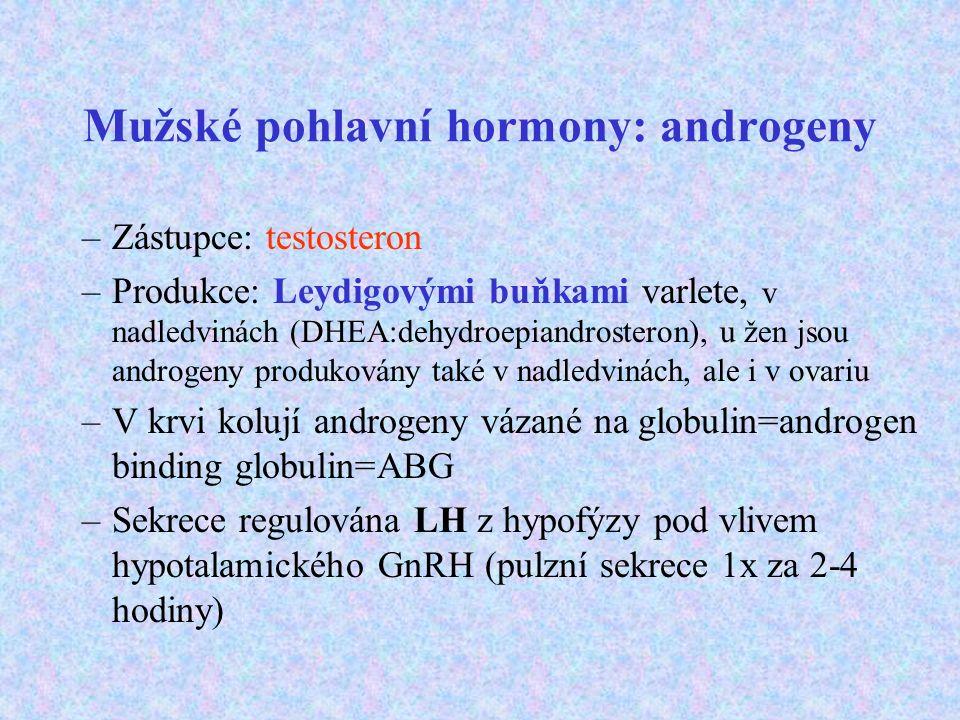 Mužské pohlavní hormony: androgeny –Zástupce: testosteron –Produkce: Leydigovými buňkami varlete, v nadledvinách (DHEA:dehydroepiandrosteron), u žen j