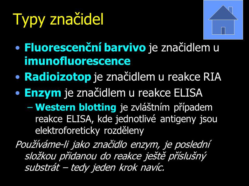 Typy značidel Fluorescenční barvivo je značidlem u imunofluorescence Radioizotop je značidlem u reakce RIA Enzym je značidlem u reakce ELISA –Western