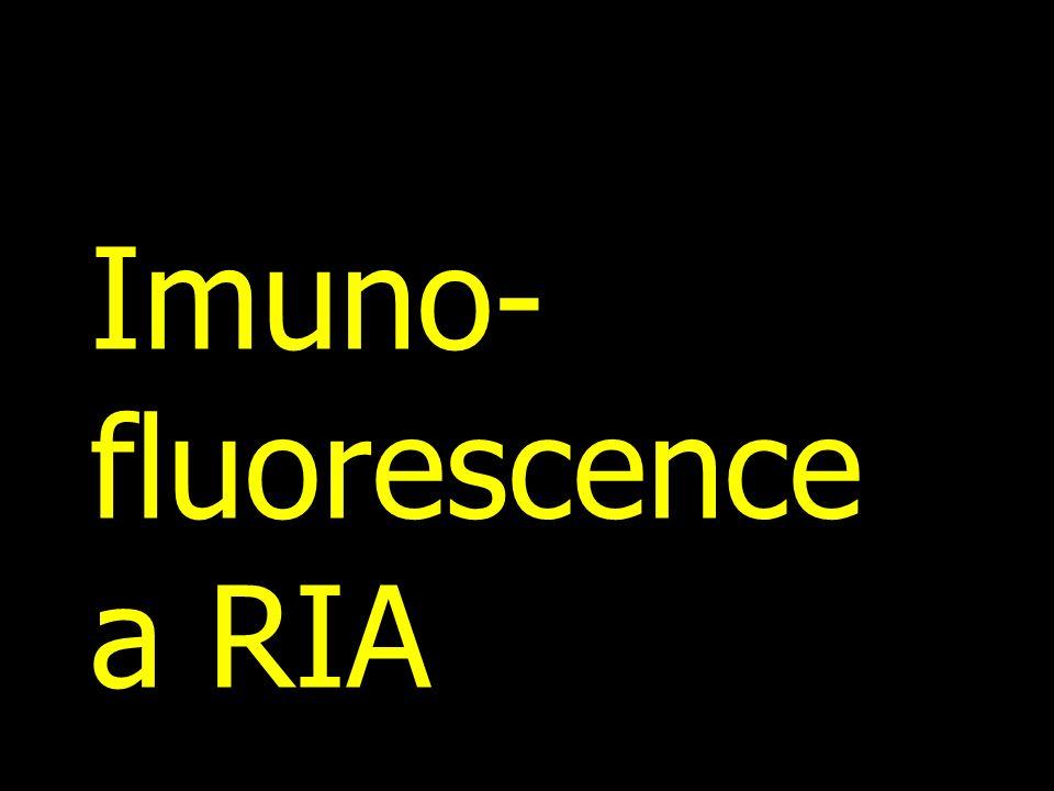 Imuno- fluorescence a RIA