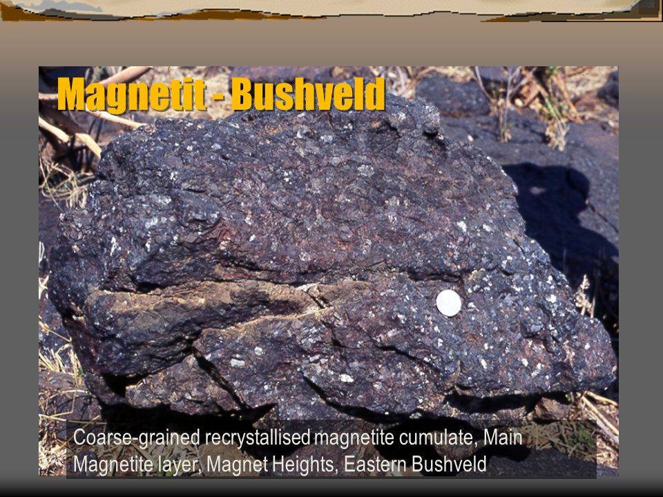 Magnetit - Bushveld Coarse-grained recrystallised magnetite cumulate, Main Magnetite layer, Magnet Heights, Eastern Bushveld