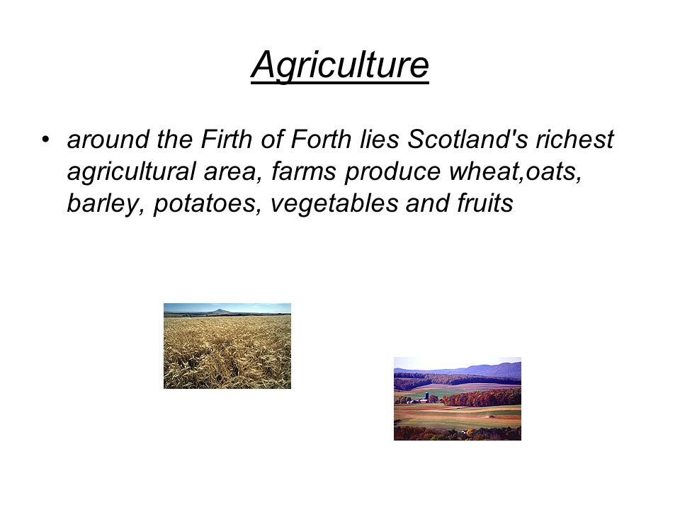 Agriculture around the Firth of Forth lies Scotland s richest agricultural area, farms produce wheat,oats, barley, potatoes, vegetables and fruits