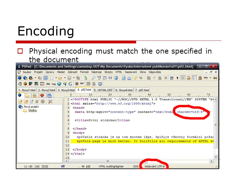 Encoding  Physical encoding must match the one specified in the document