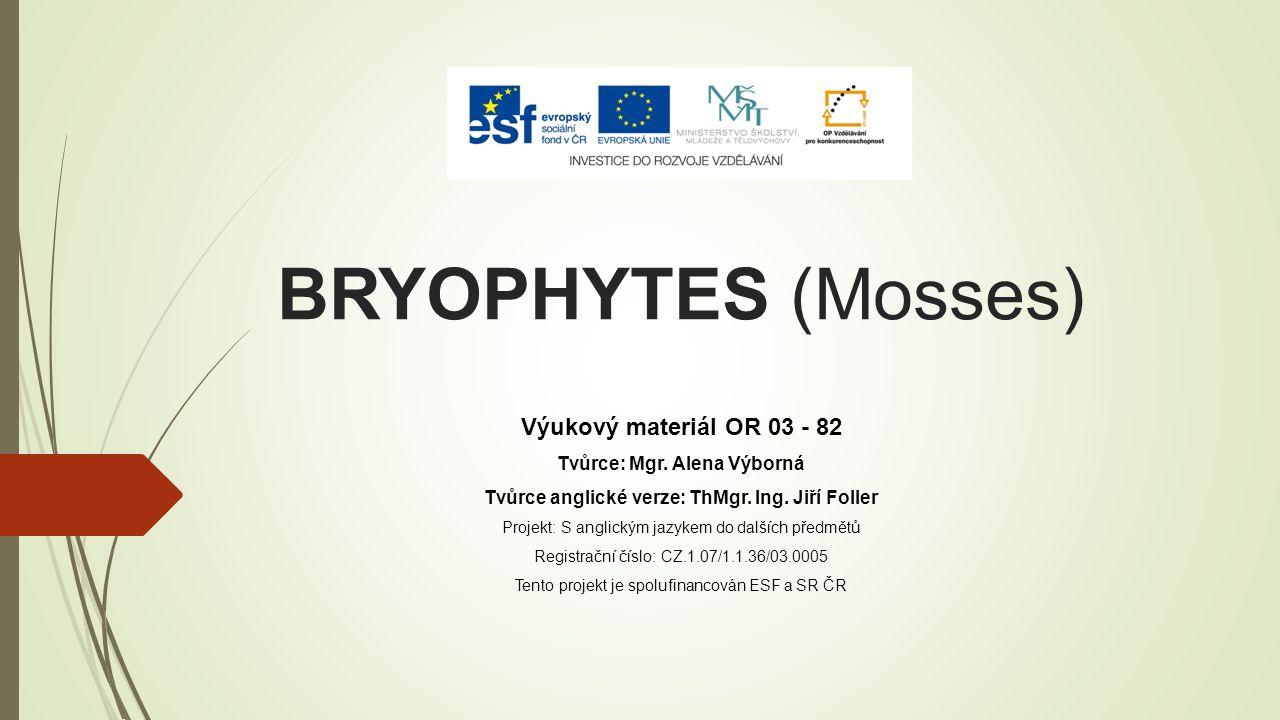 BRYOPHYTES (Mosses) Výukový materiál OR 03 - 82 Tvůrce: Mgr.