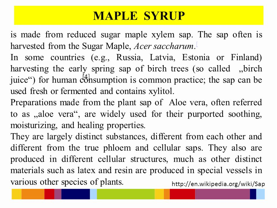 MAPLE SYRUP [1 ] [2 ] [4 ] is made from reduced sugar maple xylem sap.