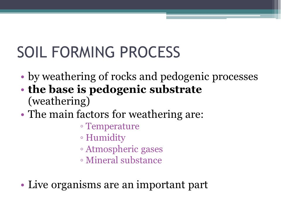 SOIL FORMING PROCESS by weathering of rocks and pedogenic processes the base is pedogenic substrate (weathering) The main factors for weathering are: ◦Temperature ◦Humidity ◦Atmospheric gases ◦Mineral substance Live organisms are an important part